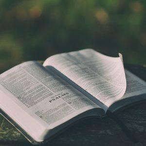 bible-1846174_640
